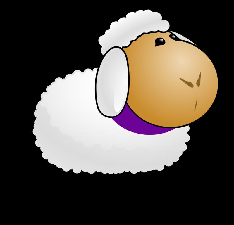 Woolfest-sheep